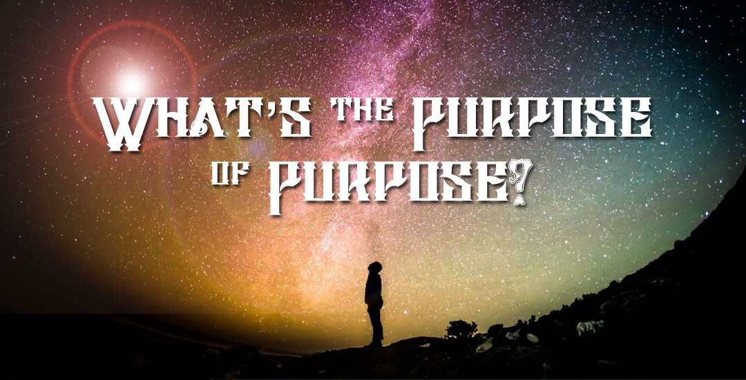 What's the Purpose of Purpose?