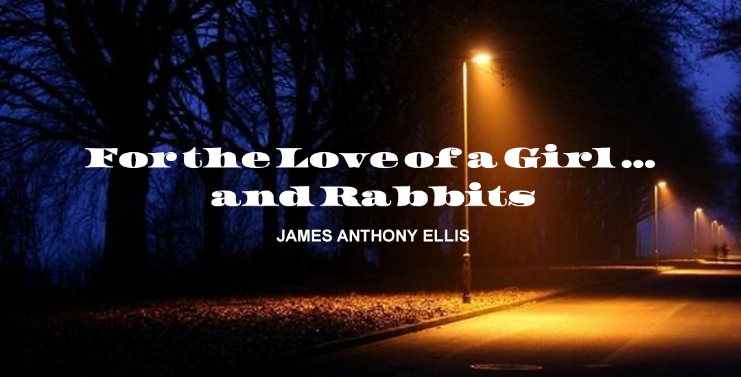 For the Love of a Girl … and Rabbits